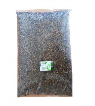 FumyFutter Mehlwürmer getrocknet 5 kg