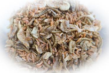 FumyFutter Insekten-Protein-Mix 500g